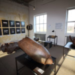 peenemuende_das_museum_sonderausstellungen_wunder_mit_kalkuer_1